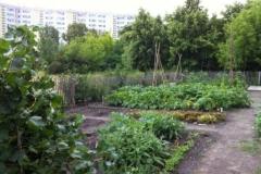 2_Schulgarten