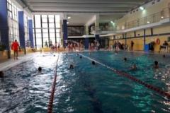 schwimmfest1