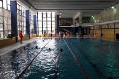 schwimmfest3