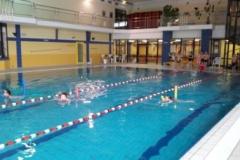 schwimmfest4